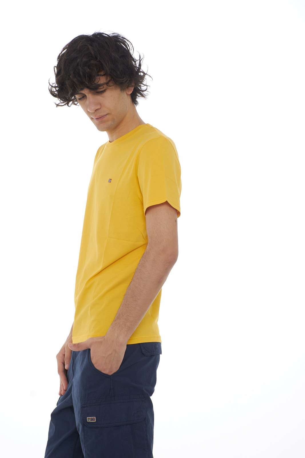 https://www.parmax.com/media/catalog/product/a/i/PE-outlet_parmax-t-shirt-uomo-Napapijri-N0YJAY-B.jpg